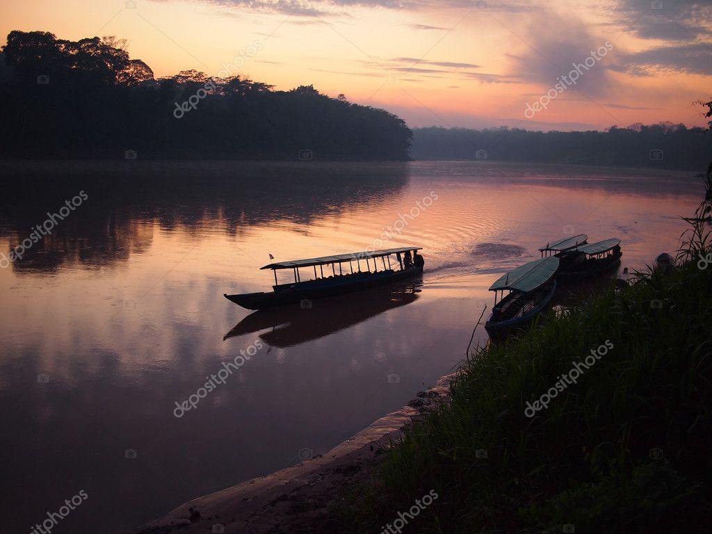 Amazon rainforest sunrise