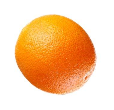 Full orange stock vector