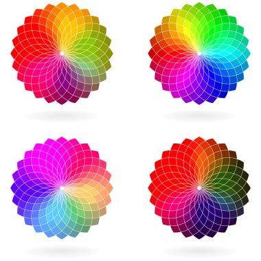Color flower vector wheel, set