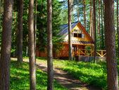 Fotografia casa nella foresta