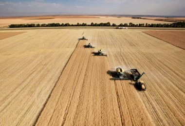 Aerial View of Harvest