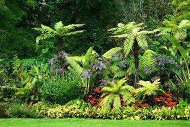 Gardens in park