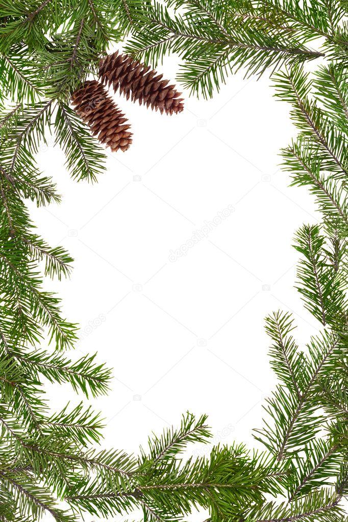 Рождеству, рамка для открытки ветка сосны со снежком
