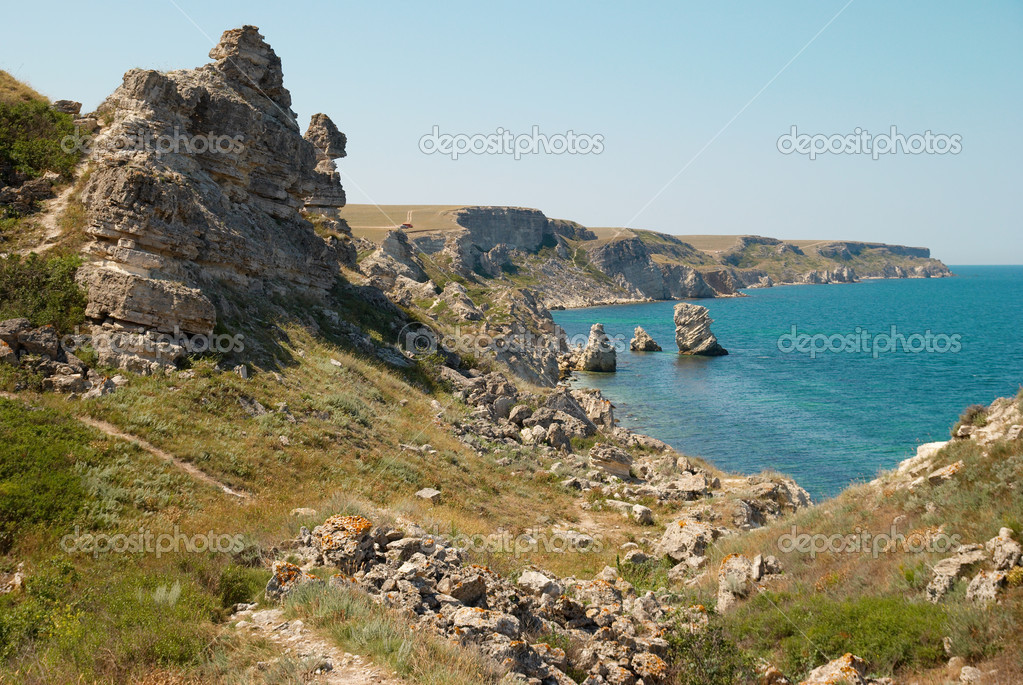A coastline with many big rocks.