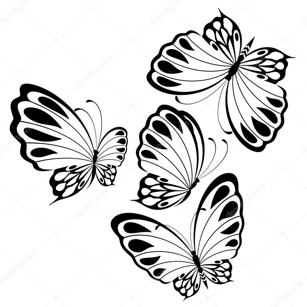 Beau papillon pour un dessin ou mod le image vectorielle - Modele papillon ...