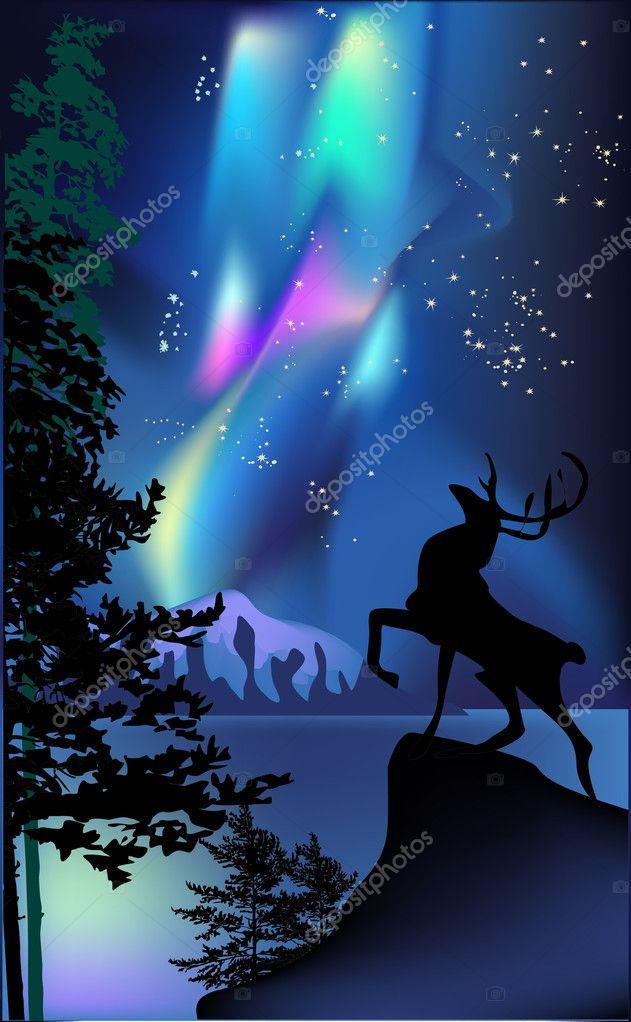 deer under aurora illustration