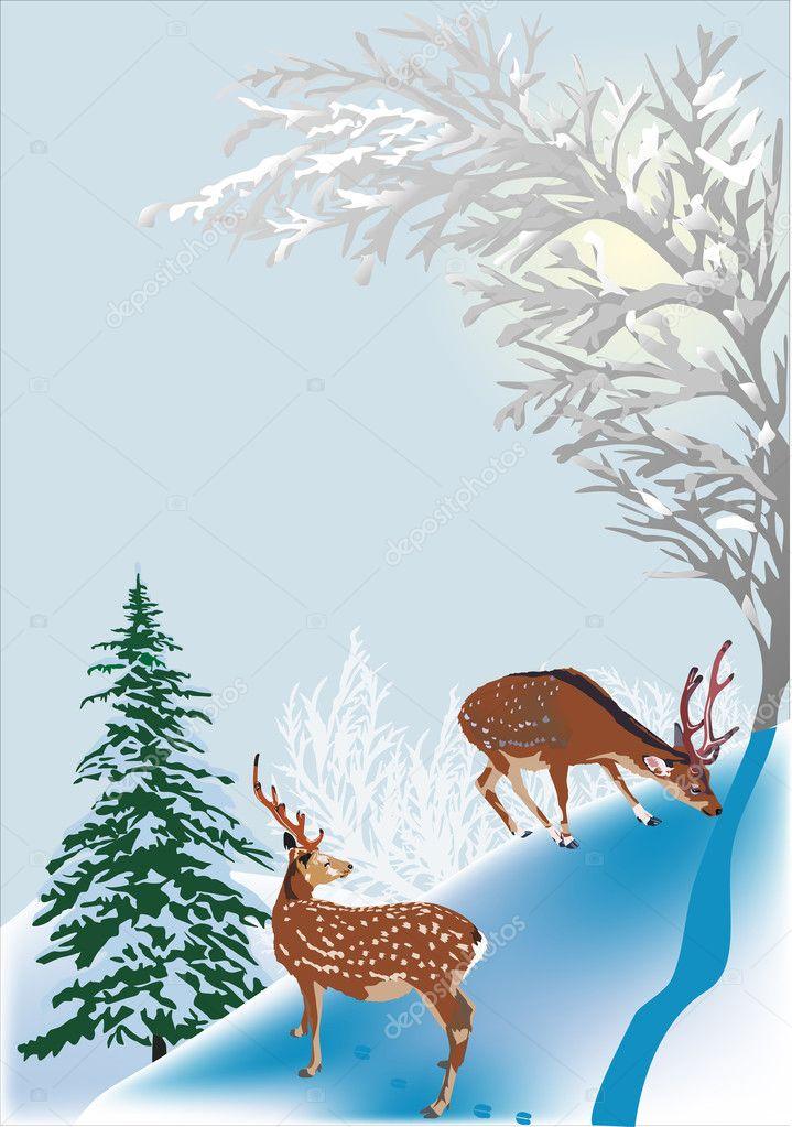 two deers between winter trees
