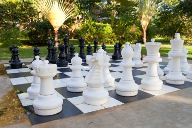 Figures for game in chess on the nature