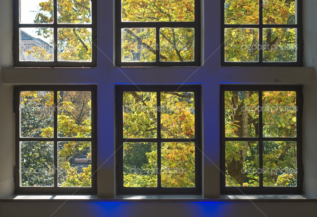 Window with Autumn View