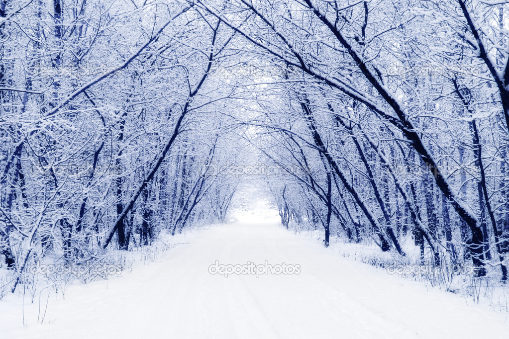 ᐈ Красивые картинки зимы фото, иллюстрация зима | скачать на Depositphotos®