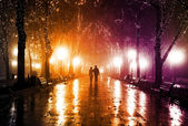 Pár chůzi na ulici v noci světla