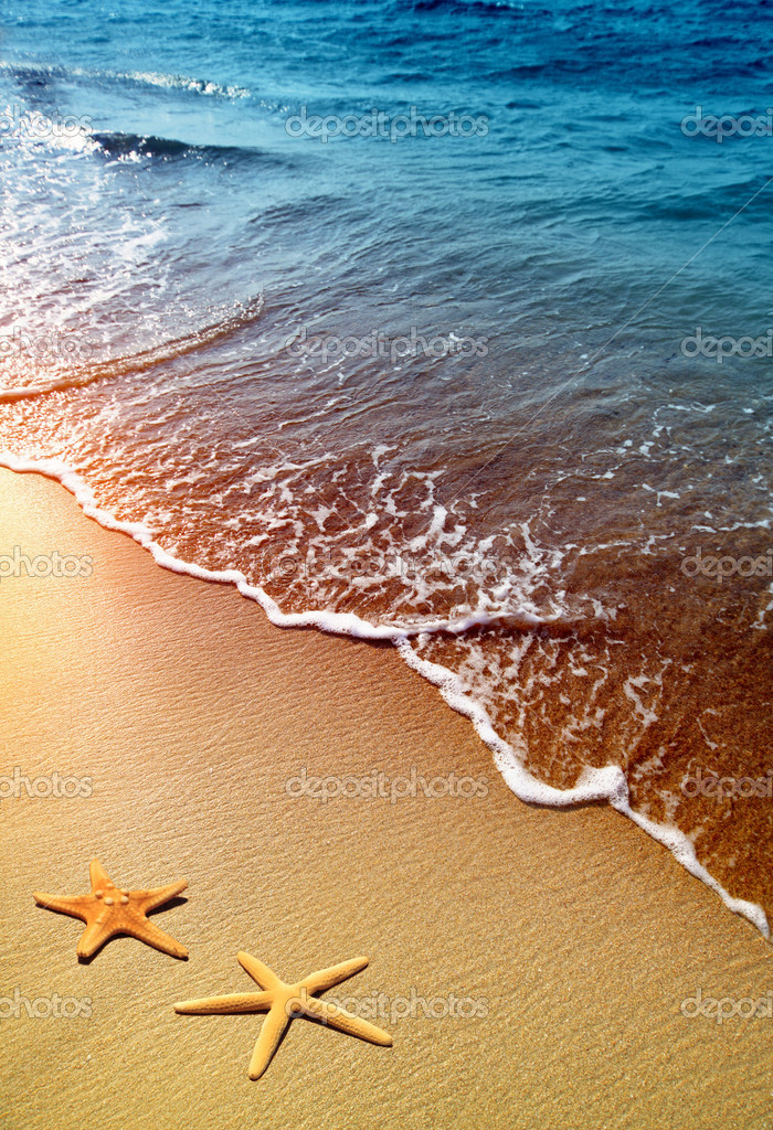 Starfish on sand and wave