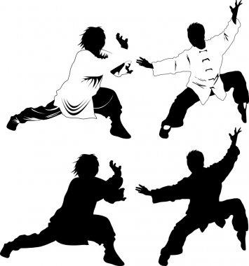 Shadow kung fu