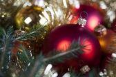 Fényképek csecsebecse karácsonyi fa