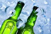 Fényképek üveg sör