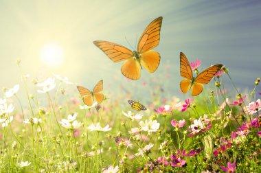 """Картина, постер, плакат, фотообои """"летние цветы картины"""", артикул 7256361"""