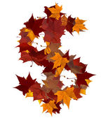 Photo Cash multicolored fall leaf composition isolated