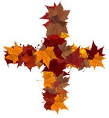 Photo Plus symbol multicolored fall leaf composition isolated