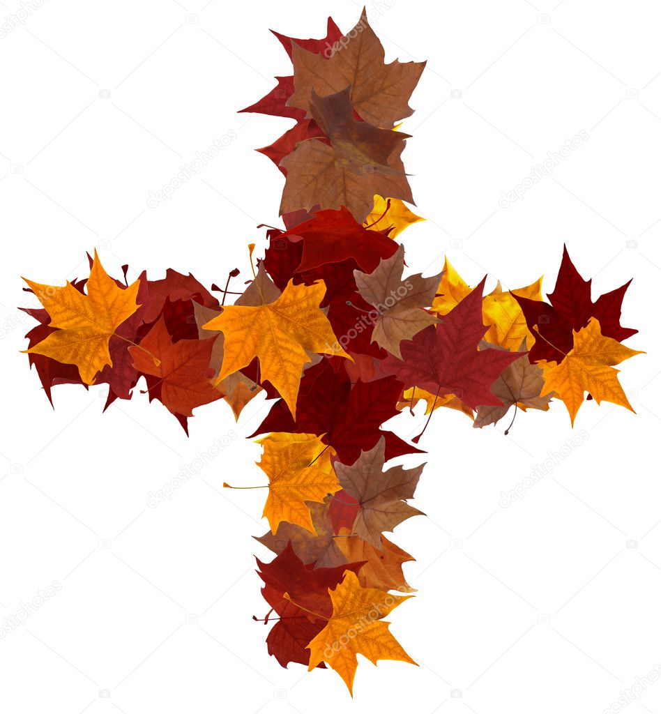 Plus symbol multicolored fall leaf composition isolated