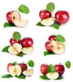 Červené jablko se zelenými listy