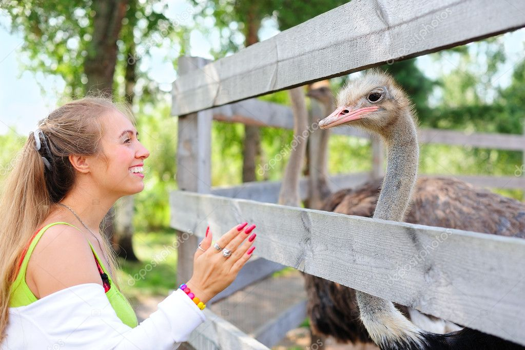 Girl communicating to an ostrich