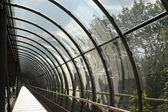 gyalogos üveg alagút