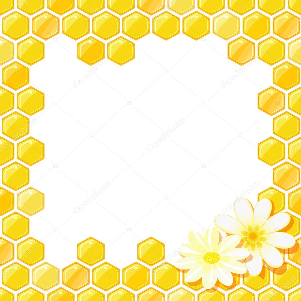Honeycomb Frame with Flower
