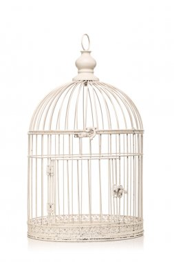 Vintage bird cage isolated on white background stock vector