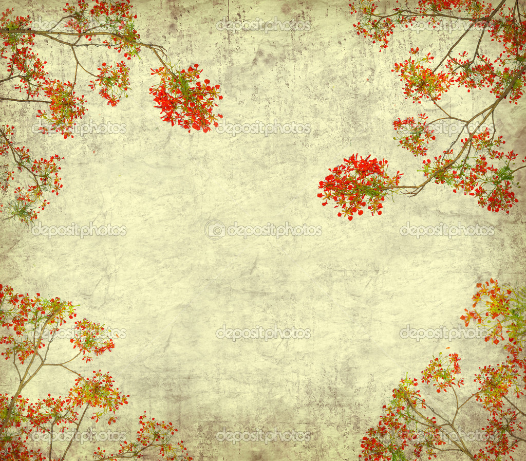 Old Paper Wallpaper: Peacock Flowers On Tree With Old Antique Vintage Paper