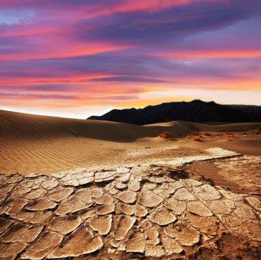 Drought land stock vector