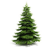 Fotografie 3d Christmas tree ready to decorate - on white background