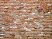Fotografie cihlové zdi textury