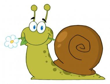 Snail Eating A Flower