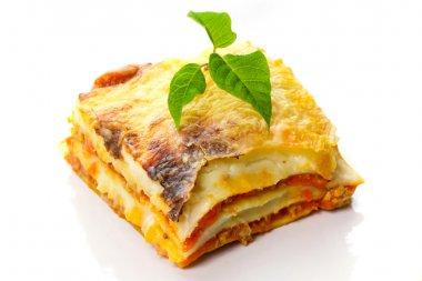 Italian lasagne dish close up stock vector
