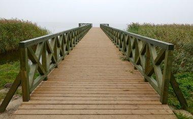 The bridge perspective