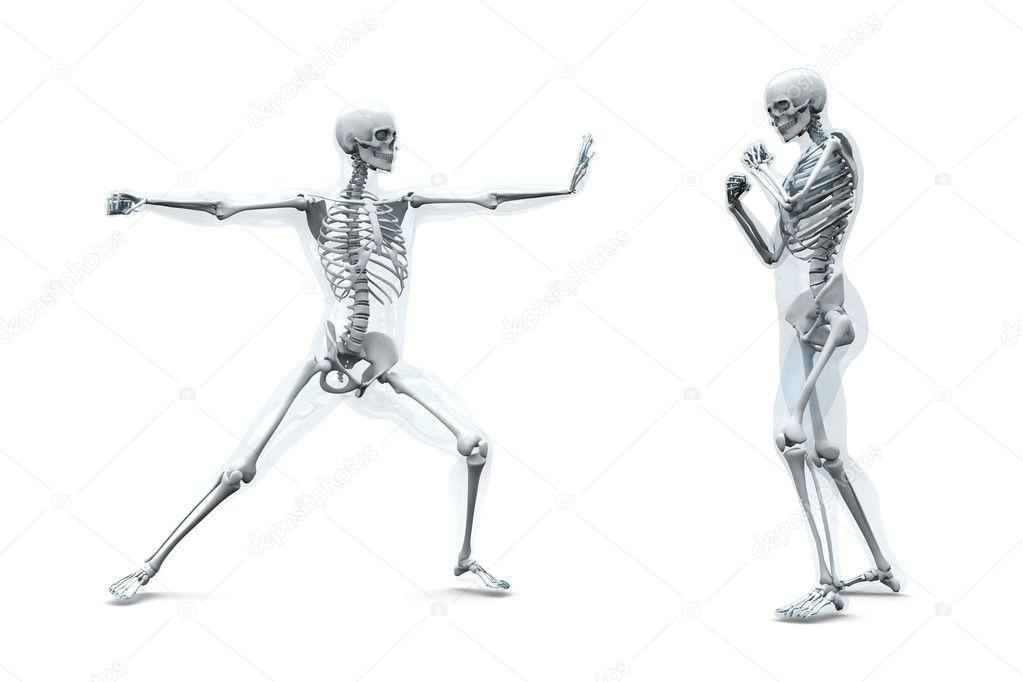 Anatomía - artes marciales — Fotos de Stock © Spectral #7660879