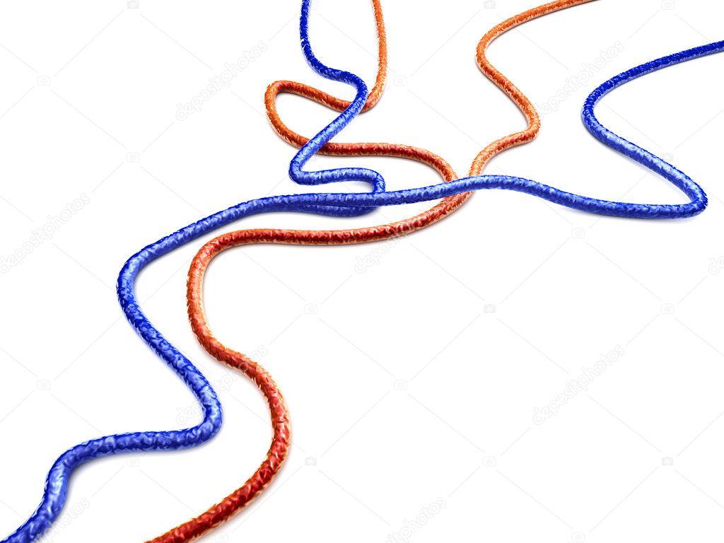 Venen und Arterien — Stockfoto © Spectral #7886515
