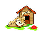 Fotografie Dog house