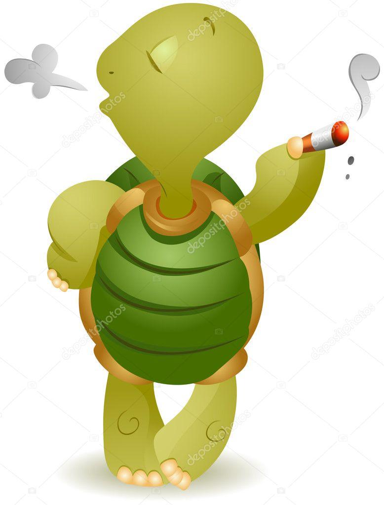 картинка курящего черепашки мой взгляд, надо