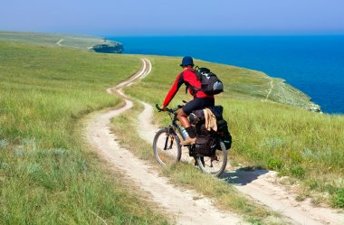 Biker on meadow