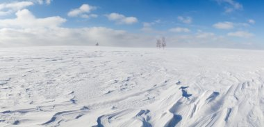 Winter panorama.