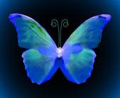 modrý motýl. vektor