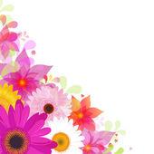 Fotografie Květinové pozadí s gerbers a listovým