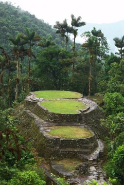 Main Terraces and the Frog Stone in Ciudad Perdida, Colombia