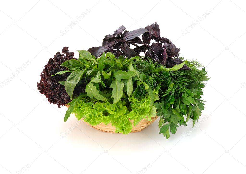 Травы для салатов в израиле фото