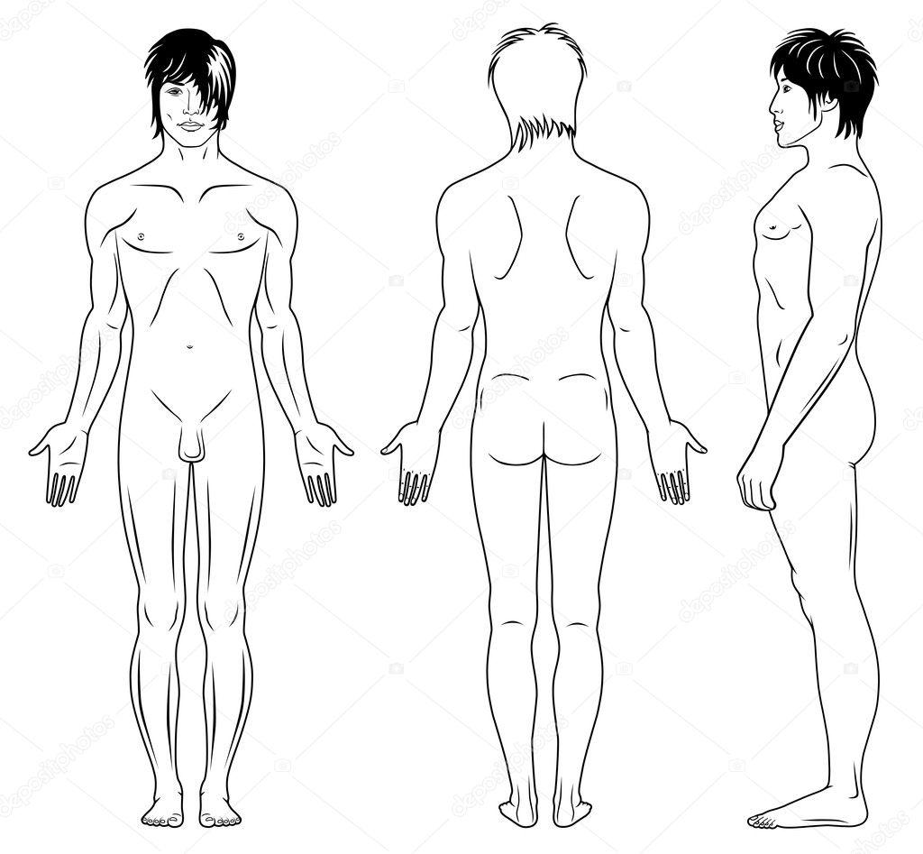Full front back nude female #4