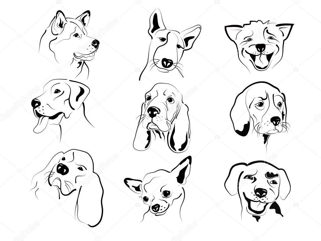 dog faces � stock vector 169 tatianat 7136063