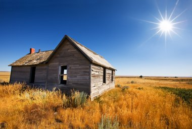 Old wooden home abandoned in the grasslands stock vector