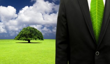 Green business concept.Businessman with leaf tie and old tree background
