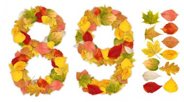 Numbers 8 and 9 made of autumn leaves